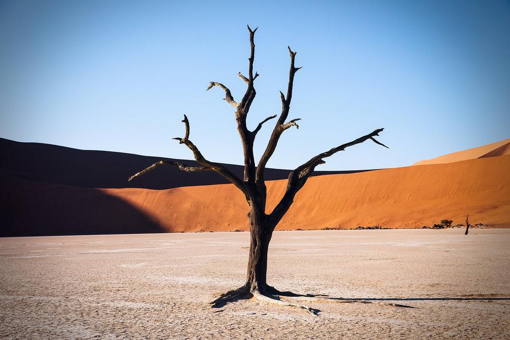 SHK_20160308_Namibia_0312.jpg