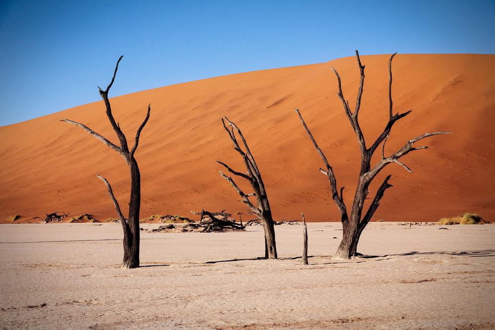 SHK_20160308_Namibia_0315.jpg