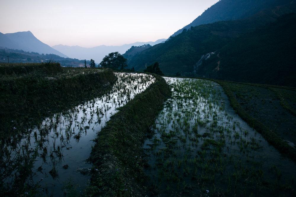 SHK_20161212_Vietnam-Sapa_3262.jpg