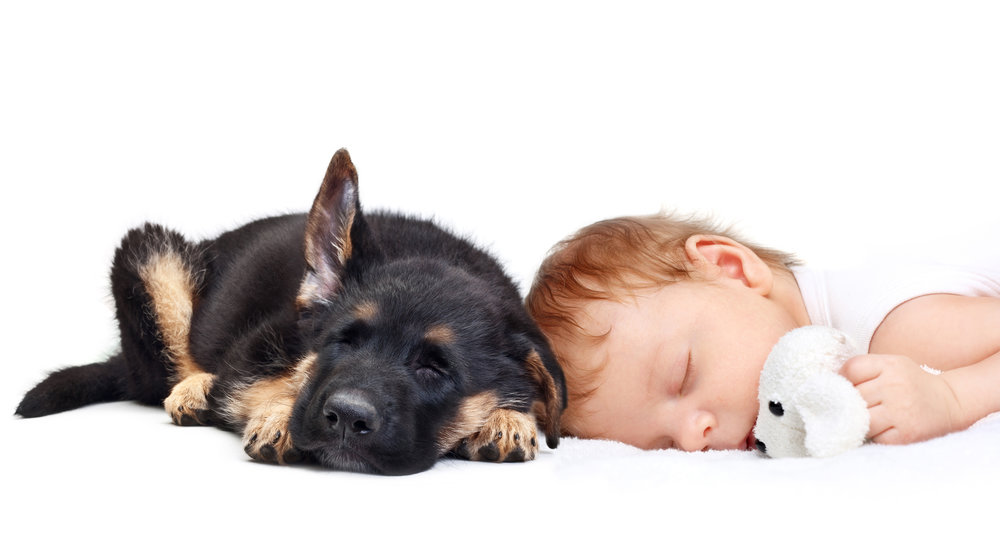 bigstock-Sleeping-Baby-Boy-with-toy-dog-52604098.jpg