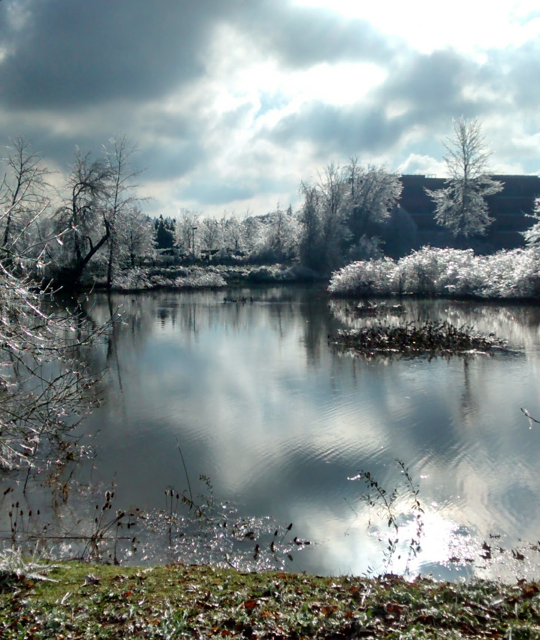 Winter Storm at Delta Ponds, Eugene, Oregon