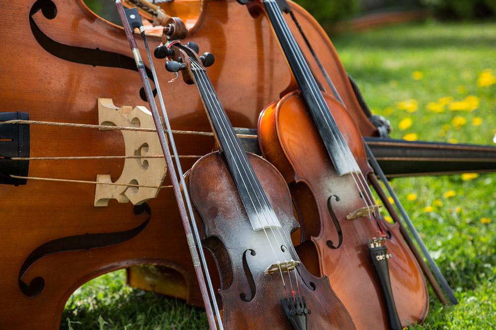 violin-.jpg