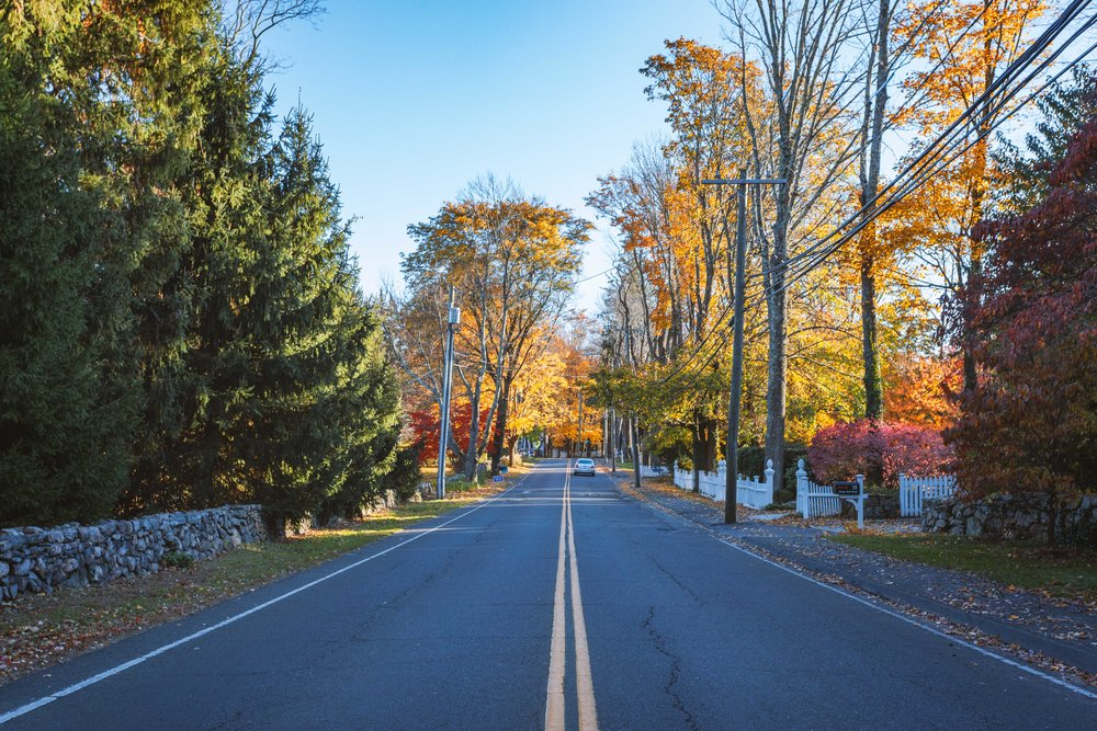 Fall scenery on the road