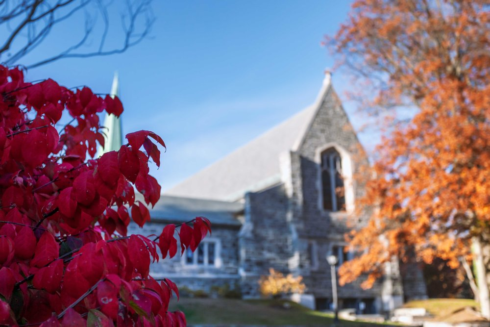 A church and the surronding foliage