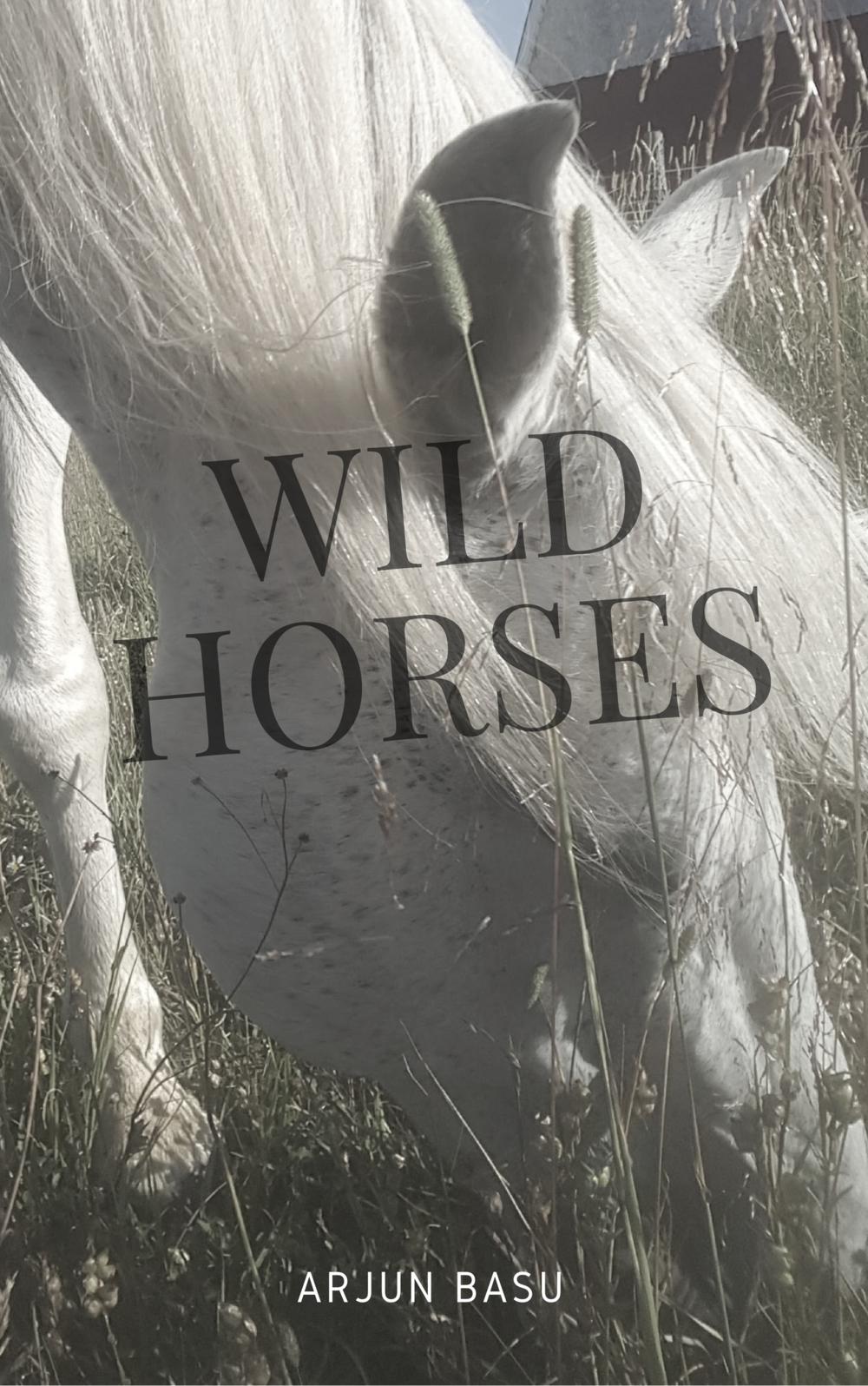 wildhorses.png