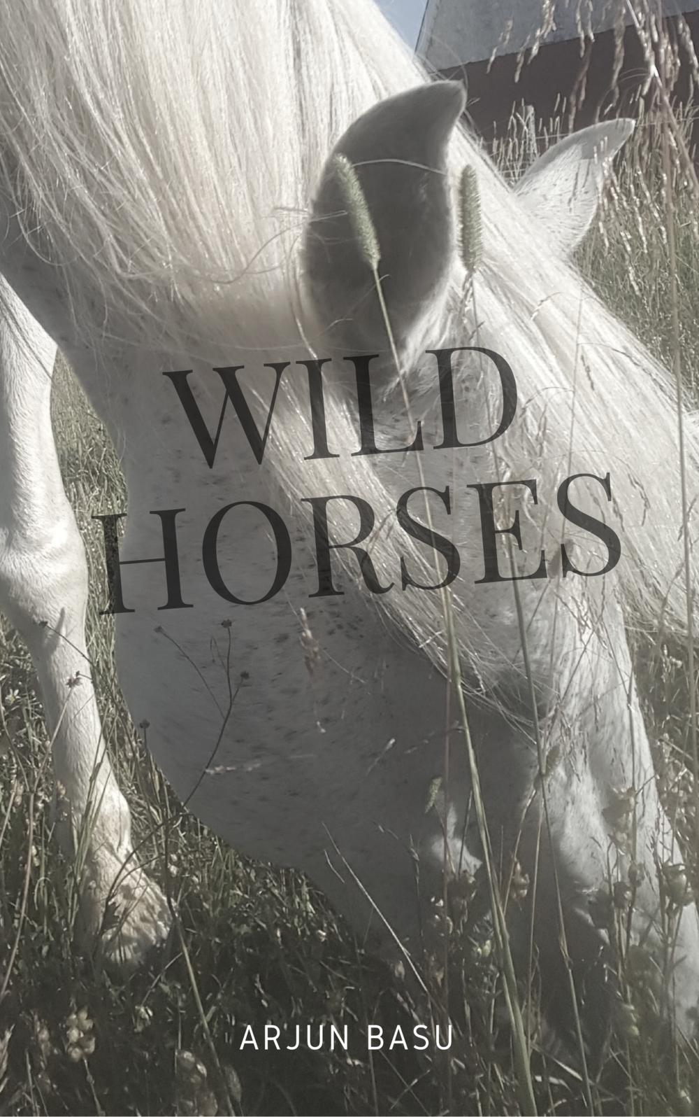 Wild Hor ses by Arjun Basu