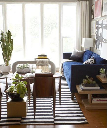 brokem stripe rug living room.JPG