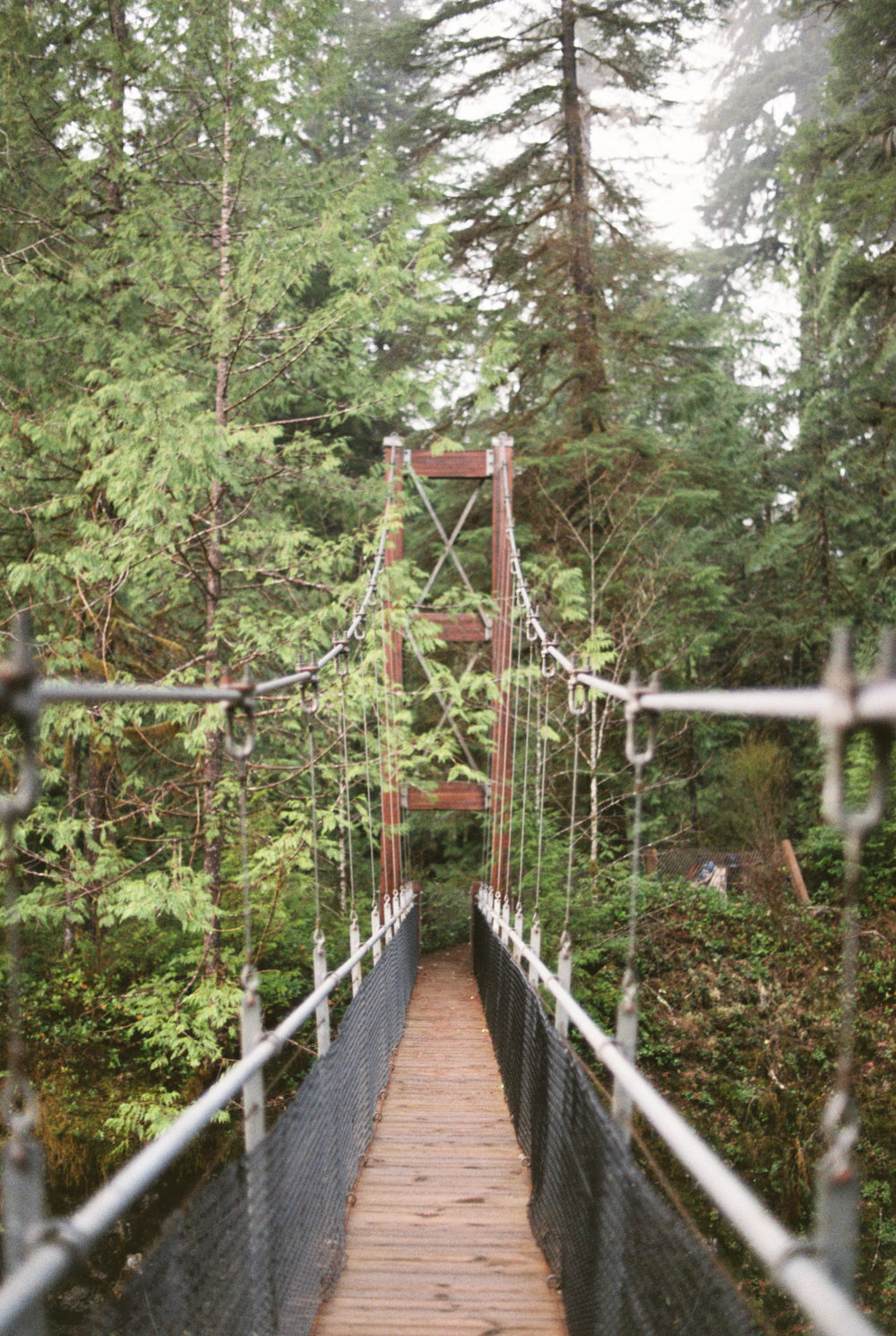Drift Creek Bridge.jpg