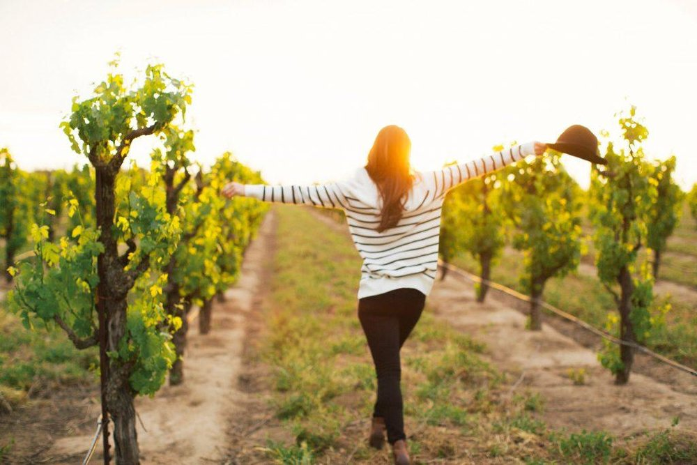 girl-in-vineyard-web-1024x683__large.jpg