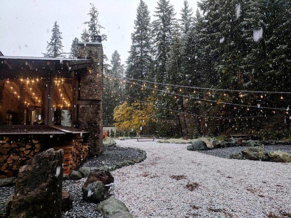 snow back.jpg