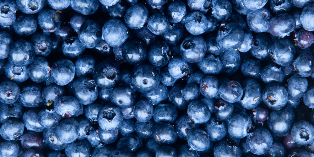 Organic Blueberries -