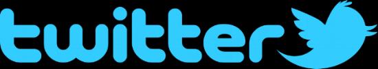 Twitter Logo After Porn Ends 2