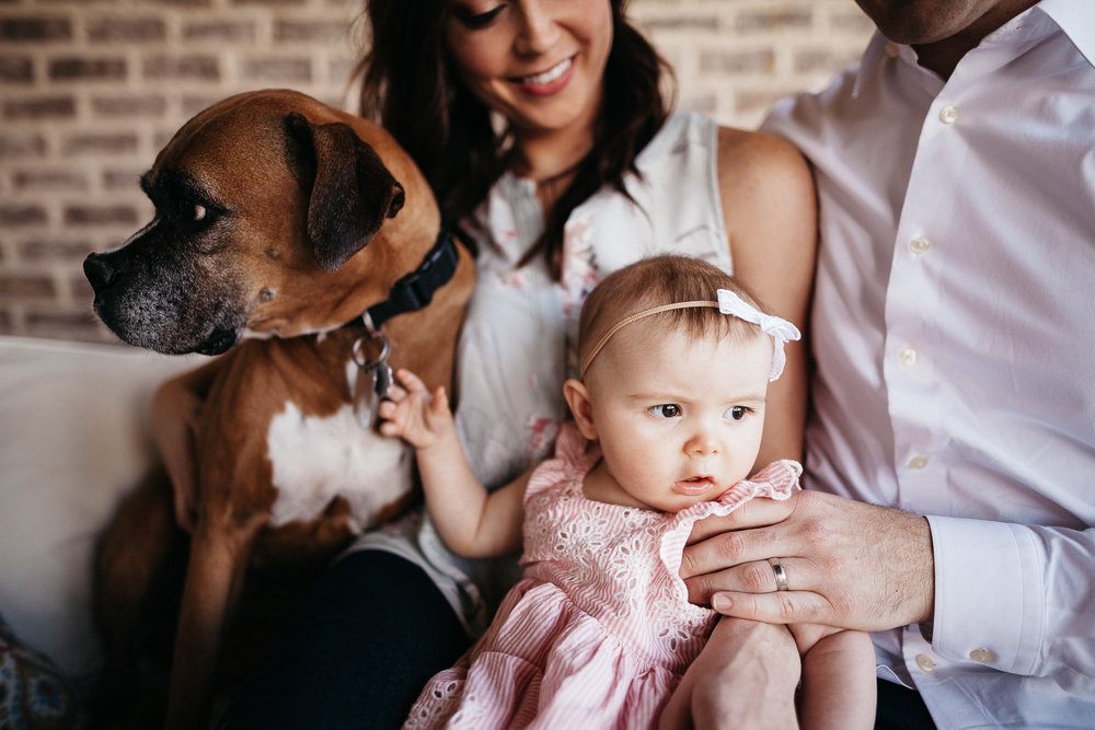 thomas wywrot photography nashville family photographer indoor in home pictures photos tn tennessee infant baby thompsons station franklin brentwood dog puppy nursery dad father mother mom girl