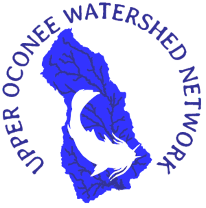 Upper Ocinee Watershed Network.png