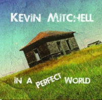 IN A PERFECT WORLD 2016  VIMA SONG OF THE YEAR (title track)  Producer Corwin Fox