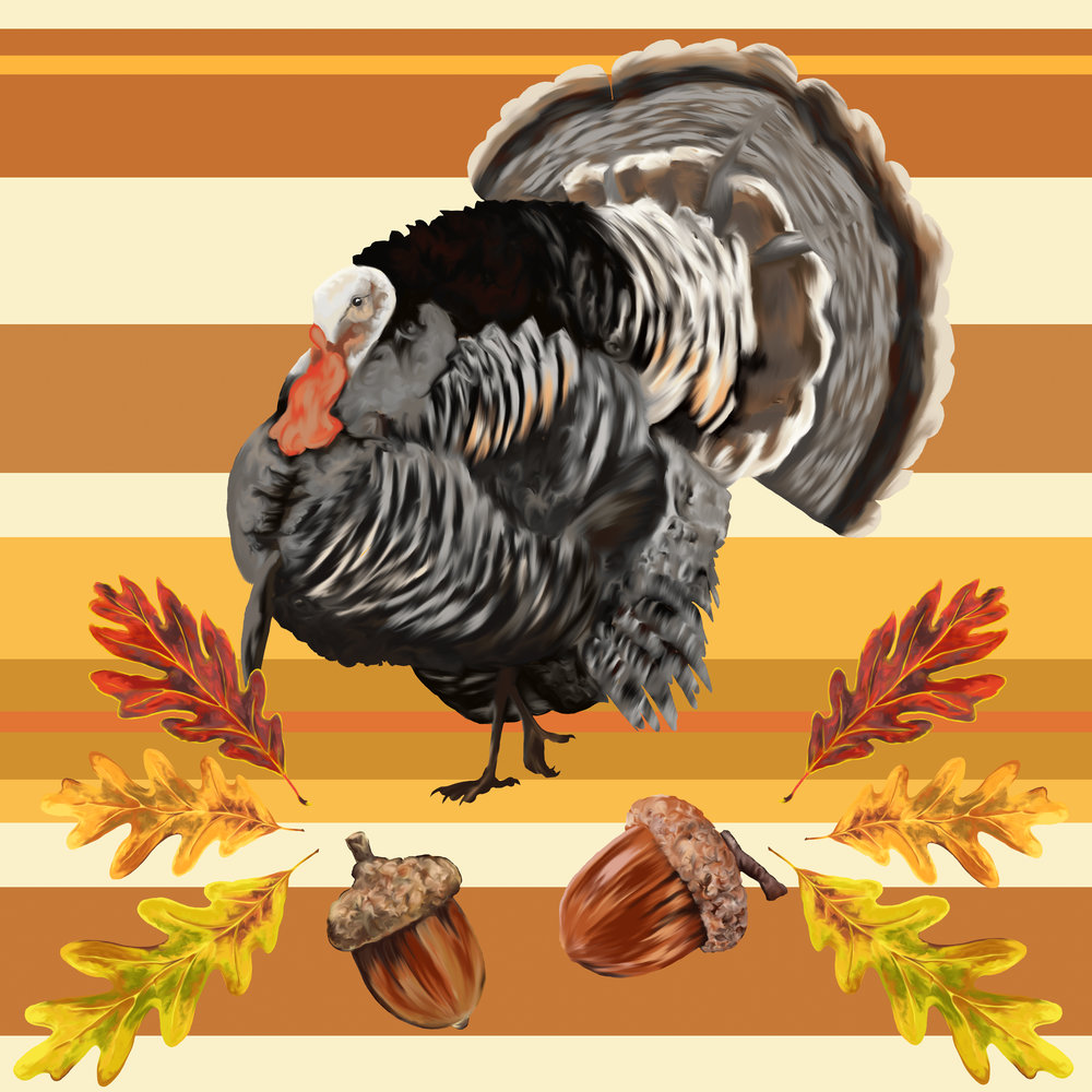 Thanksgiving alt.jpg
