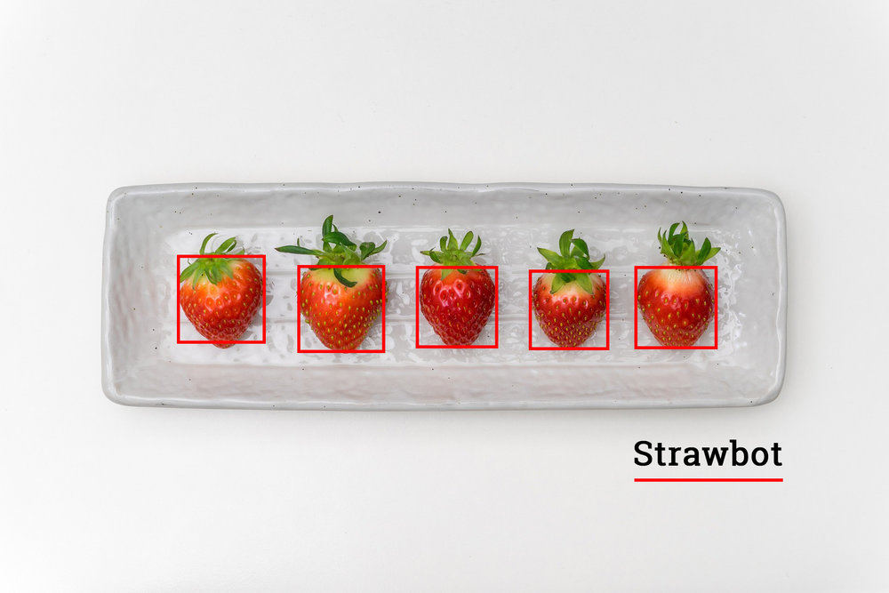 Strawbot_ - Jack's was hired to build a strawberry identification prototype. Jack's designed a state of the art solution using deep learning which not both identifies strawberries in images but also plots the best pathway for picking them. This has moved the client one step closer to their end goal of automating fruit picking.