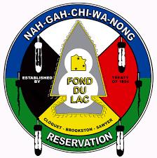 Logo FDL.png