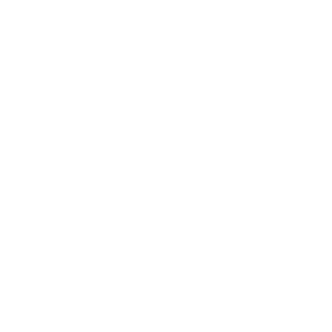 SafeWork NSW logo