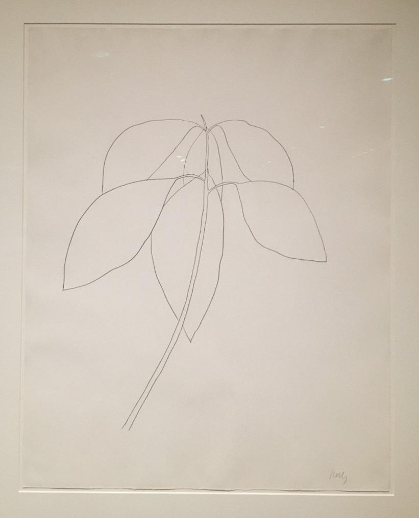 Ellsworth Kelly Sketch