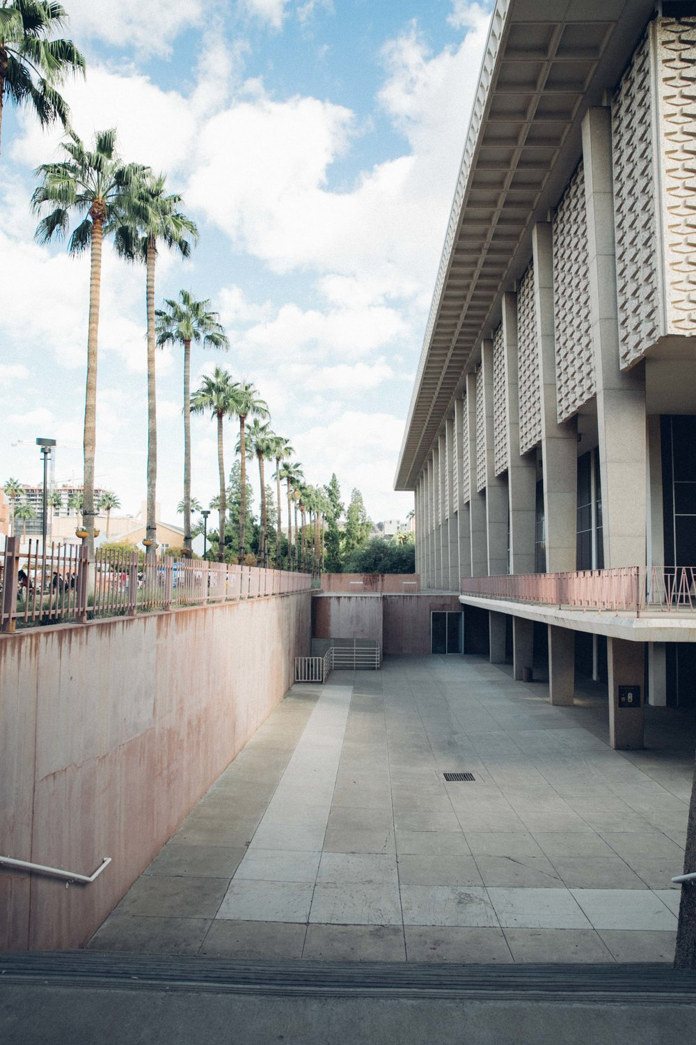ASU architecture palm trees and concrete