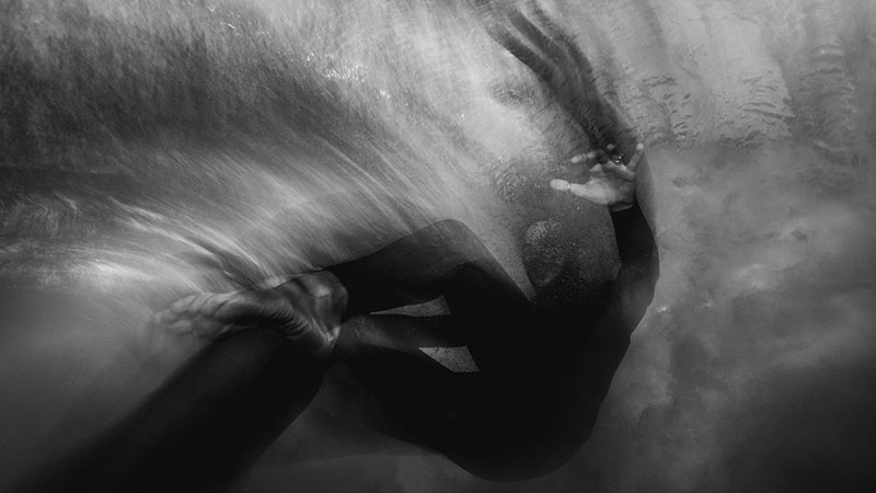 Underwater photography Trent Mitchell