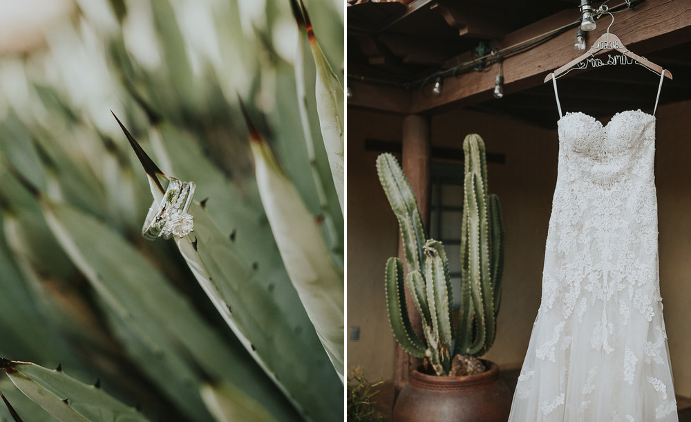 Desert Botanical Garden Wedding Denver Wedding Photographer Elopements 1