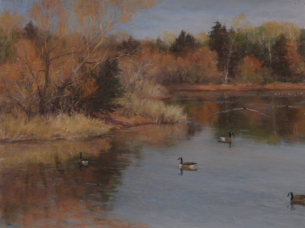 "The Sojourner's Pond 9"" x 12"" pastel"