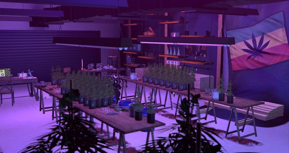 weed lab_003.jpg