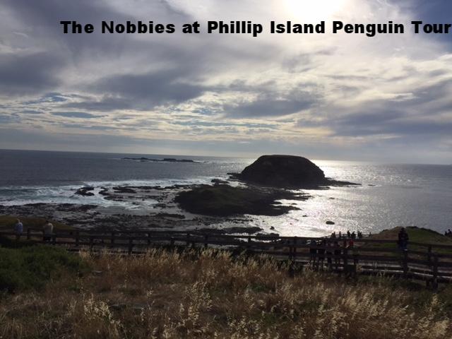 The Nobbies on Phillip Island & Penguin Tour