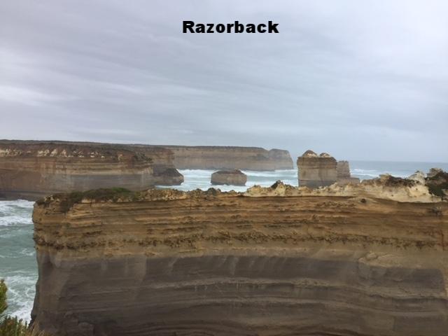 Razorback Great Ocean Road Tour
