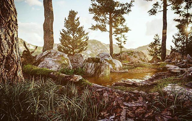 Forest composition render with Lumion 9 used Quixel scanned assets www.sciontidesign.com #lumion #lumion9 #lumion3d #forest #realism #render #render_contest #landscape #nature #river #pine #quixel #megascans #3d #environment @quixelofficial @lumionofficial @lumionfrance @lumion3d @lumionreal
