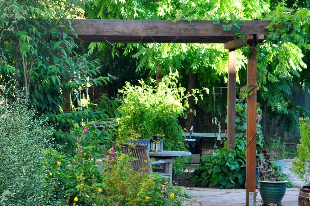 Elmwood Garden North Berkeley Design Construction Inc Amazing Design Of Garden Gallery