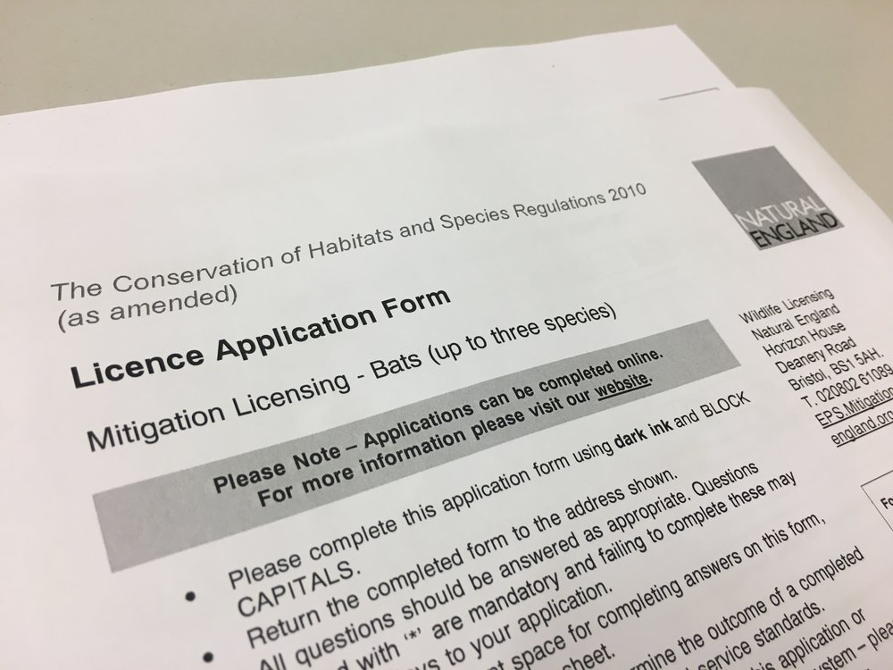 Bat licence application form