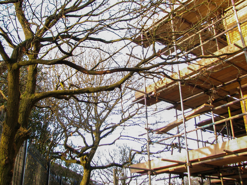 Where a development is proceeding in close proximity to retained trees, an Arboricultural Method Statement is essential to ensure that construction proceeds whilst ensuring the long term health and viability of your trees.