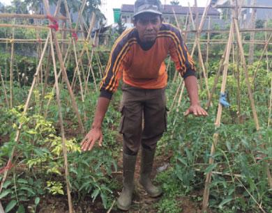 CROP FARMING TRAILS