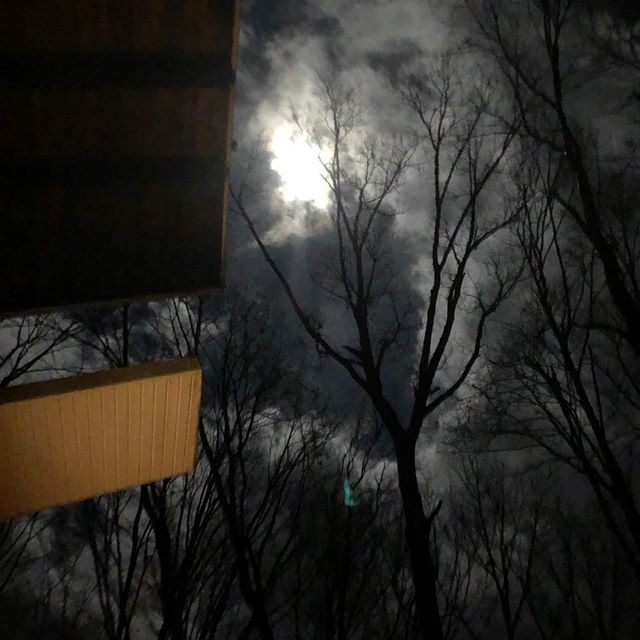 Great full moon at the treehouse ...