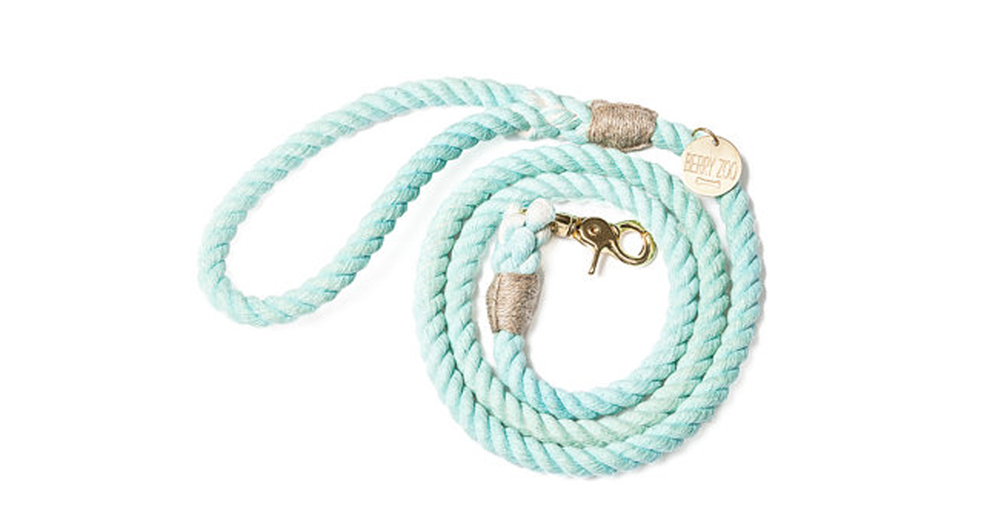 Mint Gold Classic Leash