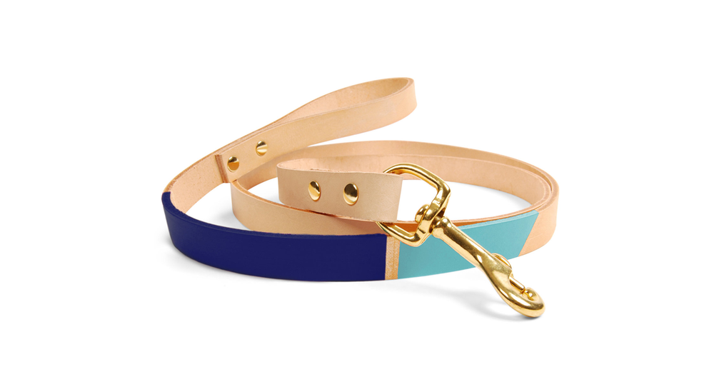 Eastwood Colorblock Leash in Navy & Seafoam by SON of a SAILOR