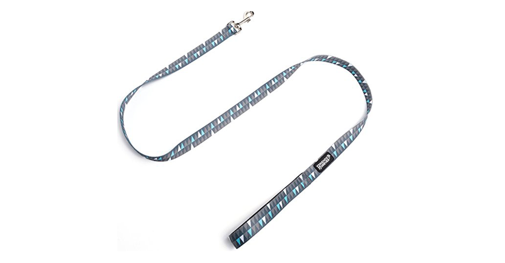 Friends Forever Pattern Leash