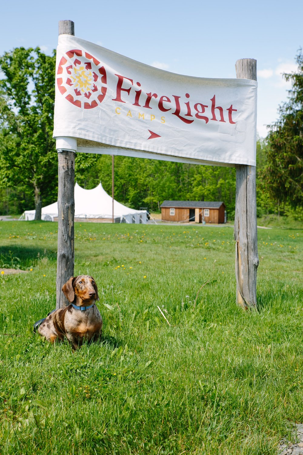 Dave at Firelight Camps