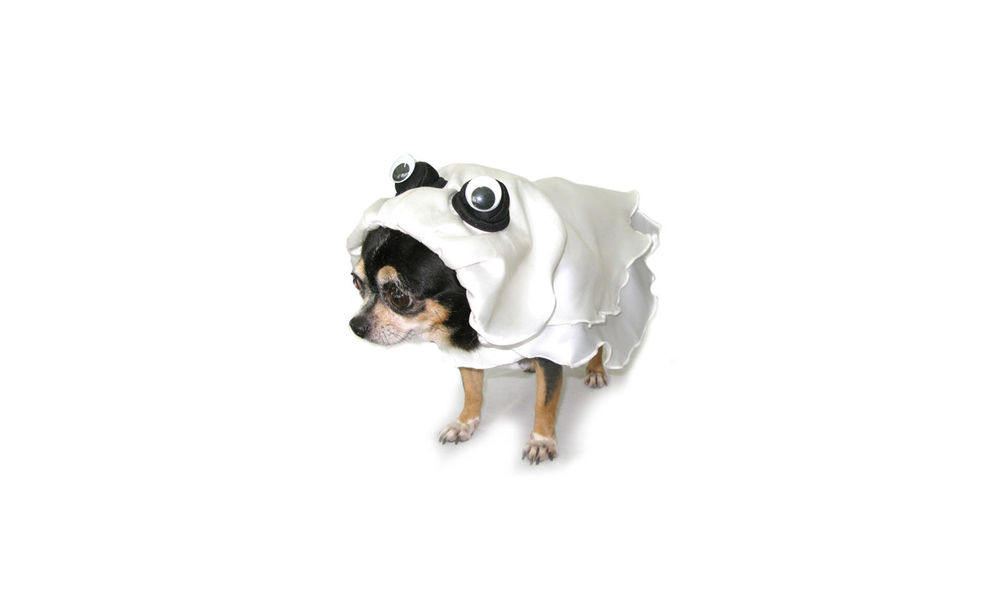 Ghost Dog Costume on Amazon