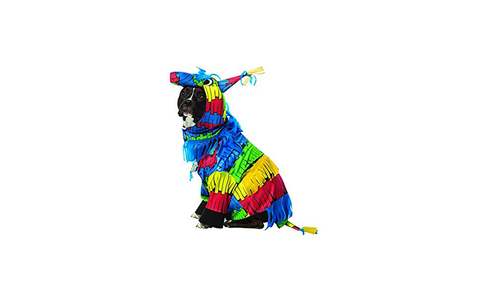 Pinata Dog Costume at Jet.com