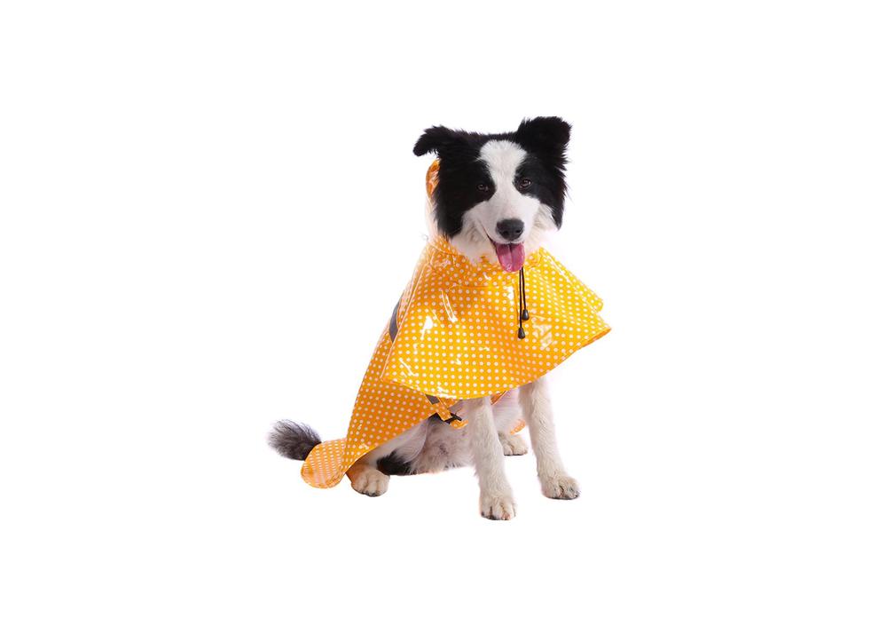 Bulabudy Raincoat