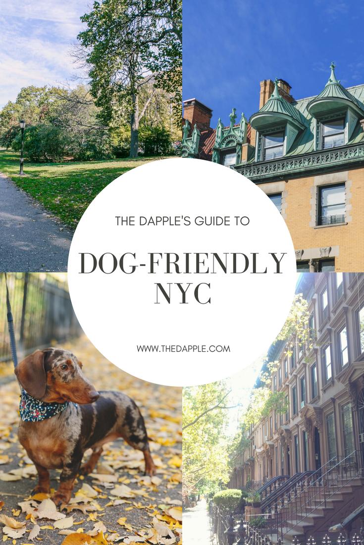 Dog FriendlyNYC.png