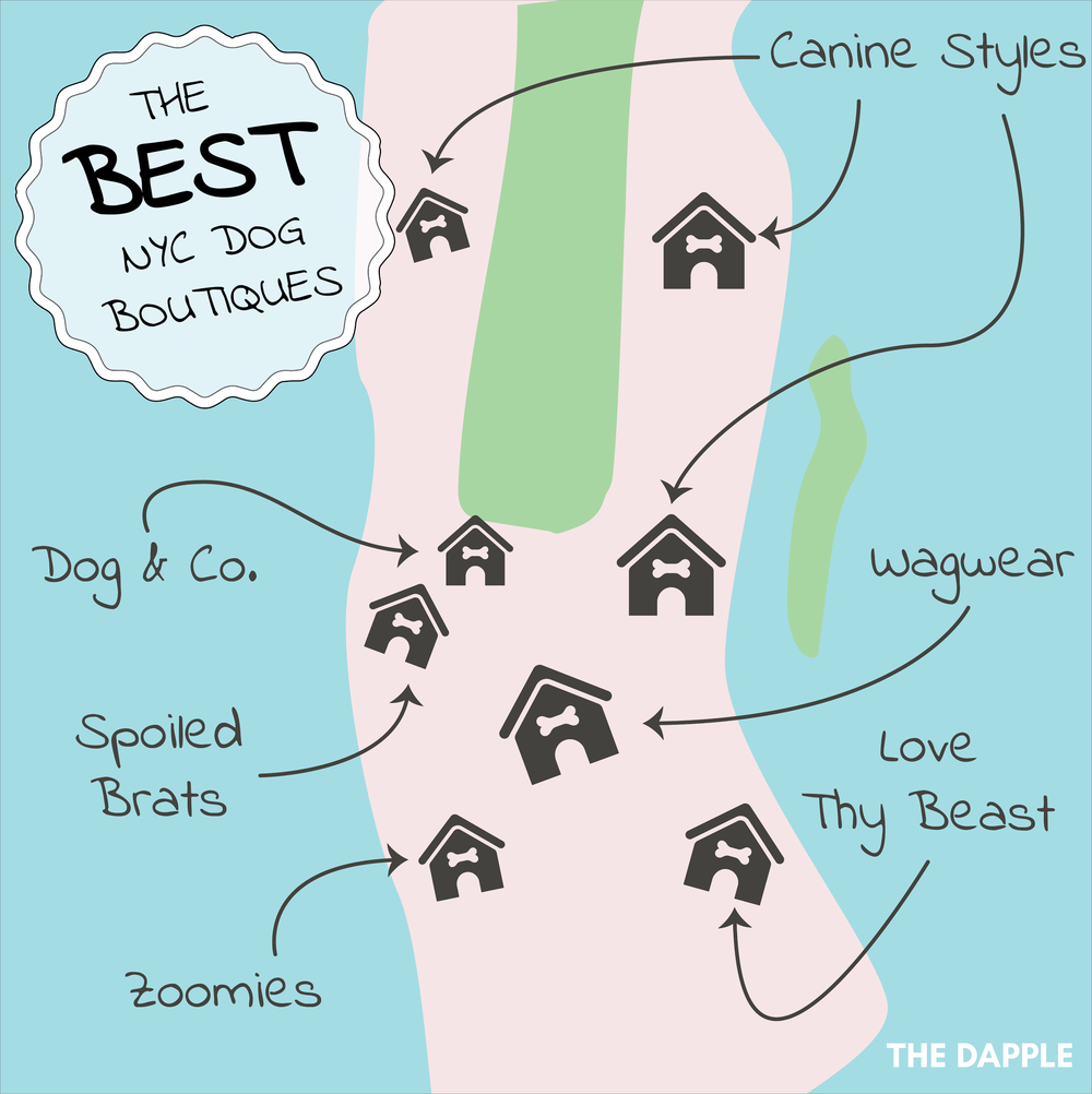Dog Guide-square.png
