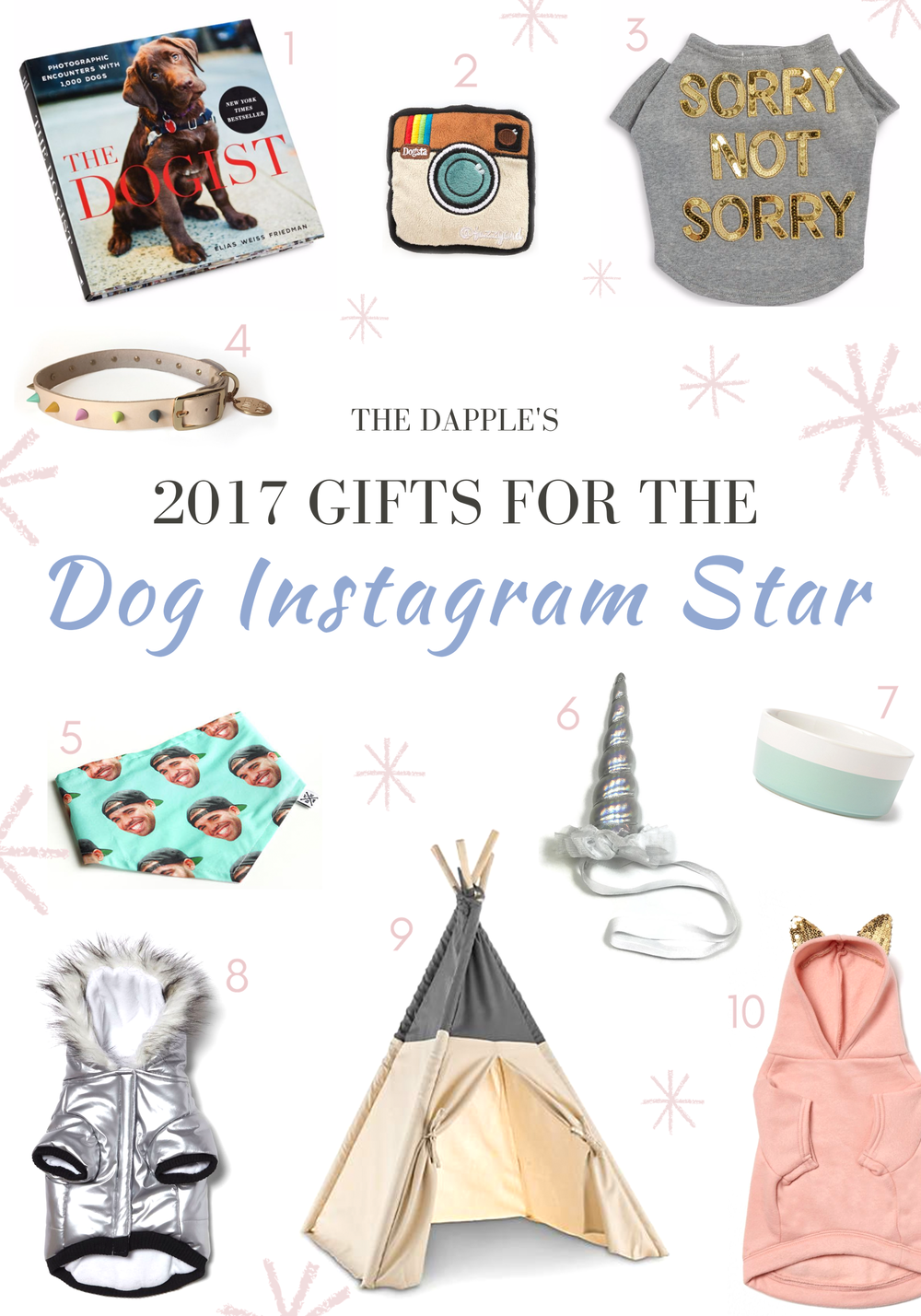 The Best Gifts for Instagram Famous Dogs