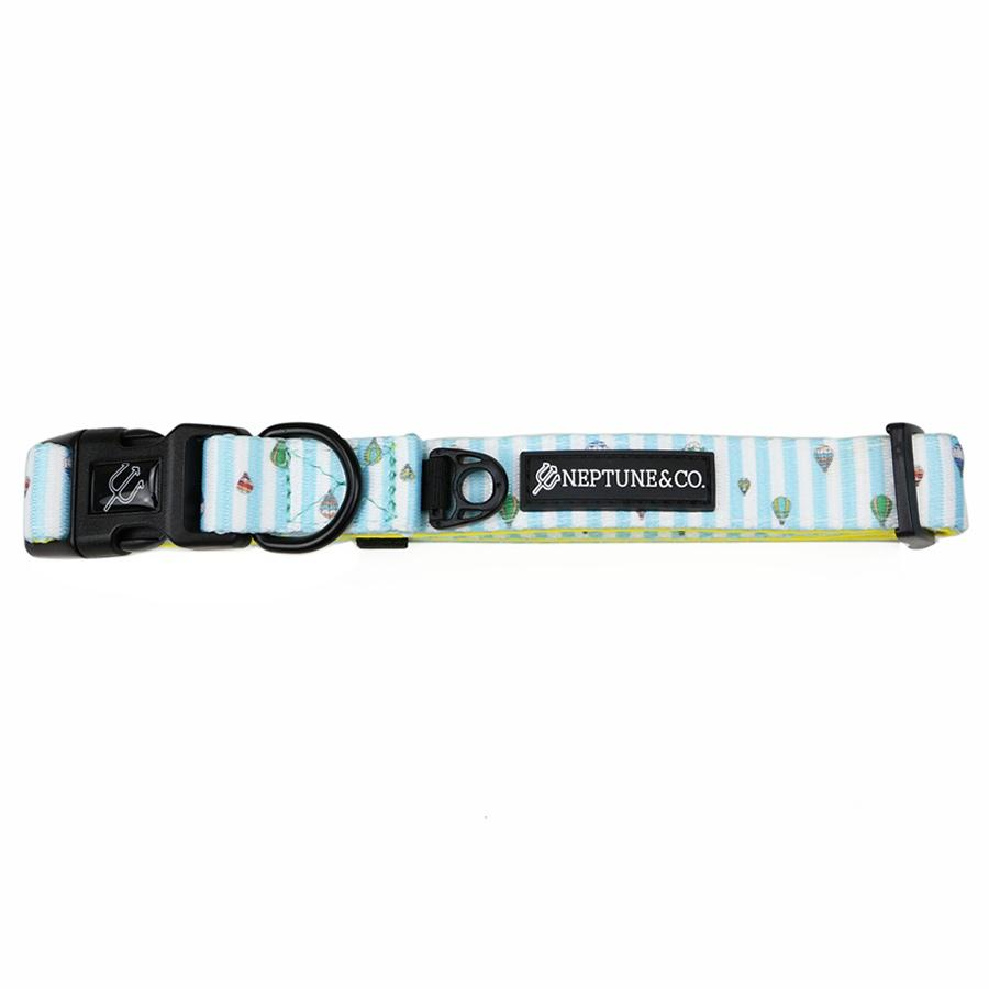 Up High Dog Collar