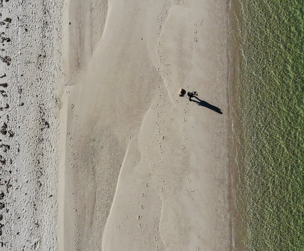 Walking on Foster Memorial Beach (via Drone)