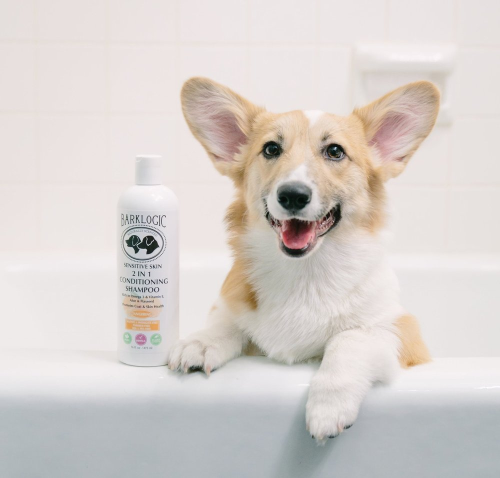 Lizzie loves BarkLogic's 2 in 1 Conditioning Shampoo